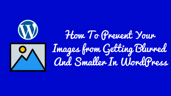 How To Prevent Your Images from Getting Blurred And Smaller In WordPress