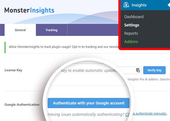 authenticate MonsterInsights plugin