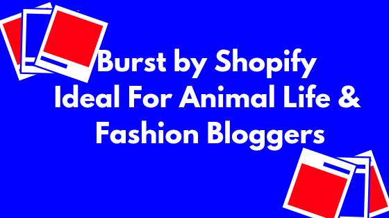 burst-by-shopify