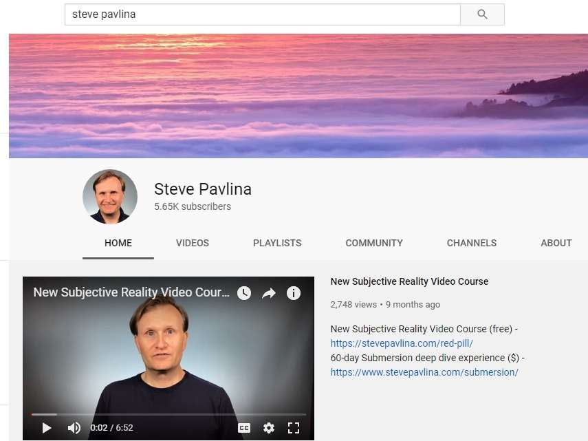 9-steve-pavlina-personal-and-branded-channel