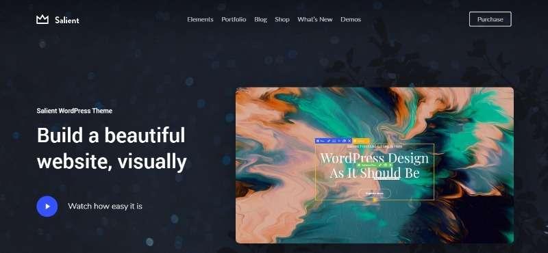 Salient-%E2%80%93-WordPress-Theme