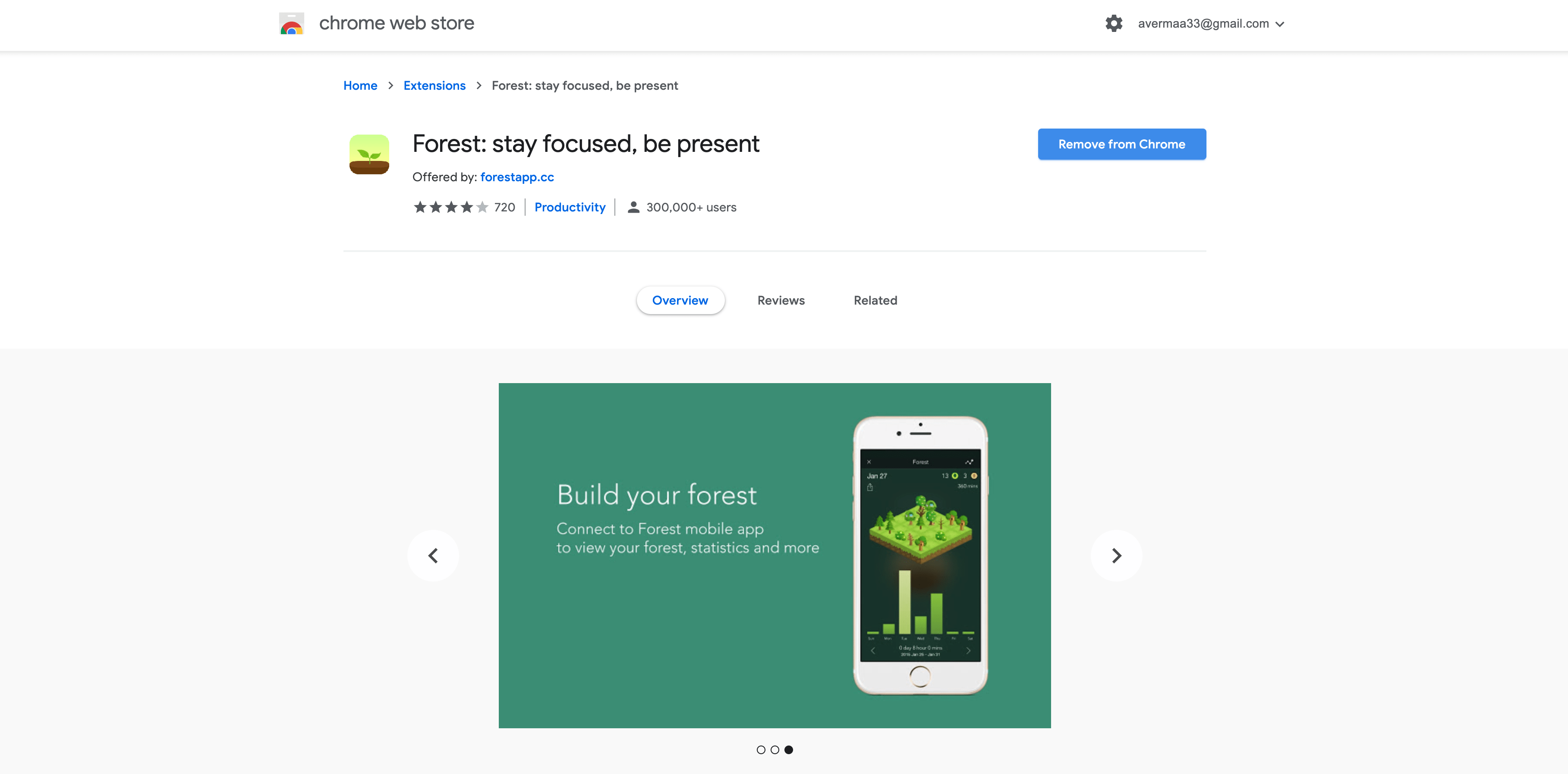 forest-stay-focused-be-prersent-extension